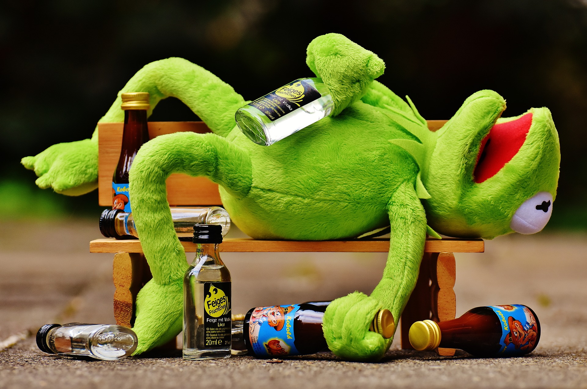 Žabac Kermit, pijani žabac